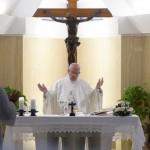 Papa: cristãos se olhem no espelho antes de julgar