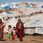 Santa Sé estará presente na 1ª Conferência Humanitária Mundial