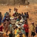 Cáritas promove oficina sobre migrantes e mudanças climáticas