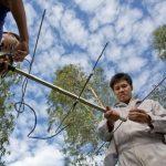 Papa convida cientistas a se aliarem na defesa do meio ambiente