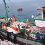 Cardeais Parolin e Vegliò na FAO no Dia Mundial da Pesca