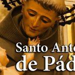 Santo do Dia- Santo Antonio de Pádua 13/06/2019