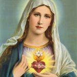Memória do Imaculado Coração de Maria 29/06/2019