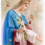 Reflexão – Nossa Senhora Rainha – 22/08/2019